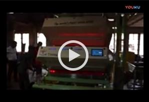 斯里兰卡客户安装泰明茶叶色先机视频